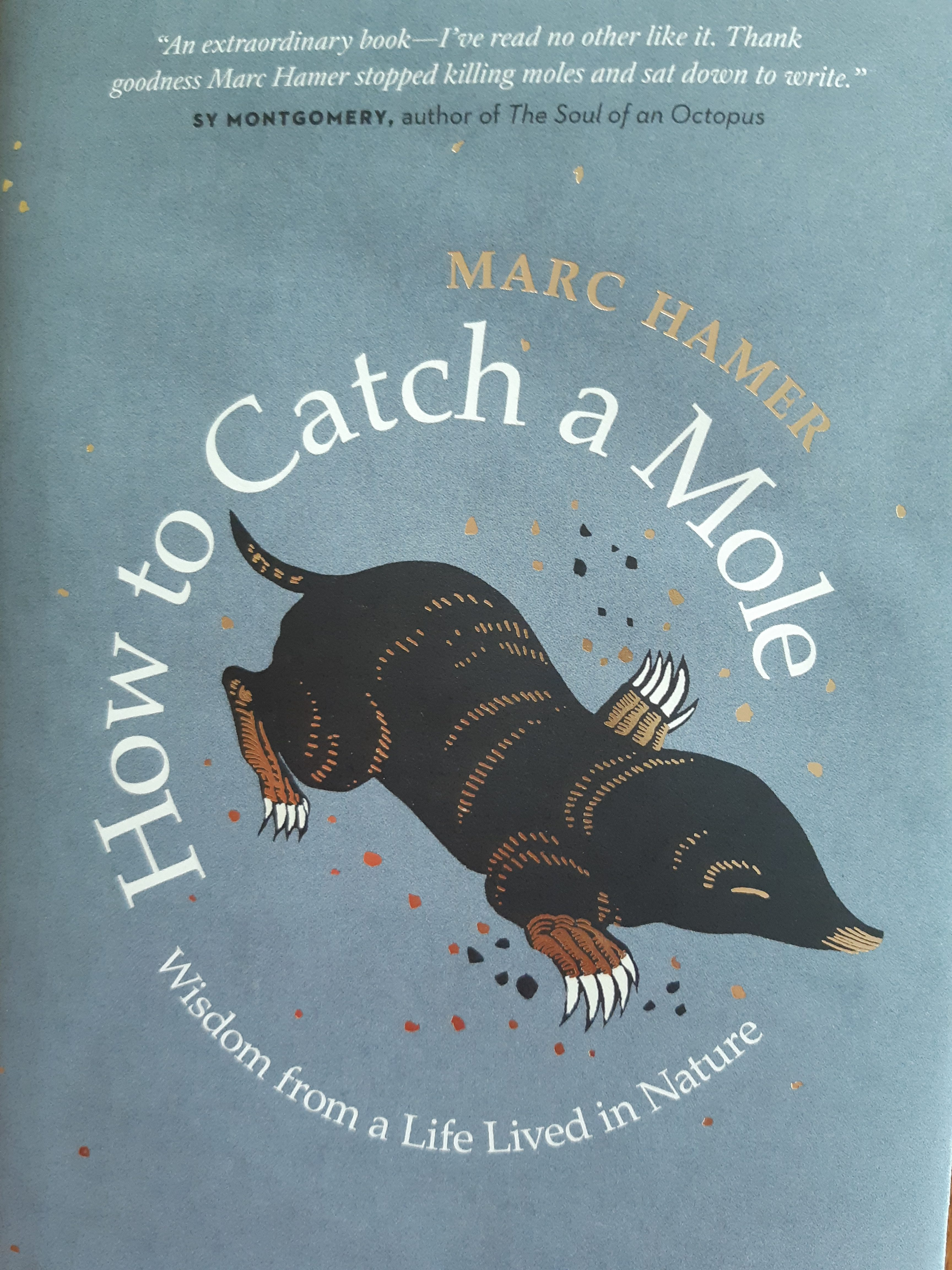 OCTOBER NATURE BOOK OF THE MONTH IS HOW TO CATCH A MOLE BY MARC HAMER